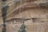 Site 634. Cliff Canyon Overlook at Mesa Verde, CO