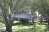 Kenya's Broadbill Swordfish, Charlton Vic