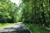 The sun shines on the Natchez Trace Parkway. MS