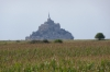 Last view of Mont St Michel from a corn field