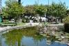 Clive Park, Napier NZ