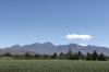 Farming area in Mesilla NM USA