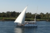 Cruising the Nile - Faluka sailing past