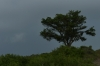 Dark clouds and promising rain over Fort Fisher at the mouth of Cape Fear River, NC