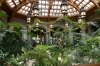 Winter Garden, Biltmore Estate, Asheville NC