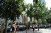 Trees mark the foundations of the former world trade center. 9/11 Memorial Site