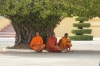 Monks relaxing at the Royal Palace