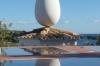 Pigeon loft, Dalí's house at Portlligat