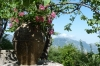 The gardens, Villa Cimbrone, Ravello