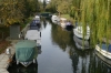 Canal beside Phyllis Court, Henley-on-Thames UK