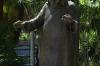 Mother Teresa statue at the Metropolitan Cathedral, Rio de Janeiro BR
