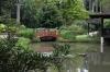 Japanese gardens, Jardim Botânico, Rio de Janeiro BR