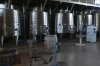 The champagne room at House Vineyard, Casablanca Valley CL