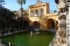 Estanque de Mercurio, Reales Alcázares, Seville