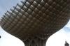 Metropol Parasol, aka Las Setas de la Encarnación (mushrooms)