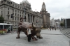 The Bull of Wall Street (no bear), The Bund, Shanghai CN