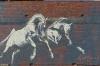 Horse Mural by Kaff-eine, Beulah VIC AU