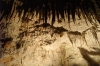 Postojna Cave SI