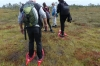 First steps, bog walking. Wilderness Trip in Soomaa National Park EE