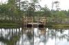 Swimming platform. Wilderness Trip in Soomaa National Park EE
