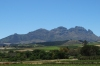 Simonsig mountain from Beyerskloof Vineyard, Stellenbosch, South Africa