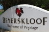 Beyerskloof Vineyard, home of Pinotage, Stellenbosch, South Africa