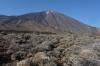 El Teide from the caldera, Las Caňadas, Tenerife ES