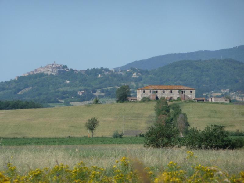 A walk near Tenuta di Papena