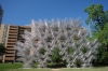 Ai Weiwei 'Forever bicycles (2014), Austin TX USA also seen in Melbourne AU and San Diego CH