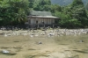 Dilapidated house by river at Juara beach, Tioman Island