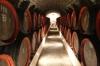 Zlatý Strapec winery, Viničky SK