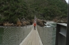 Suspension Bridges. Suspension Bridge Walk, Tsitsikamma National Park, South Africa
