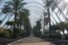 L'Umbracle garden walk