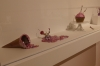 Exhibition by Alison Pack 'Metal Delicious', Taubman Museum, Roanoke VA