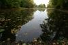 Lake at Wilanów Park. Warsaw PL