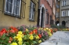 Autumn flowers in the old town of Warsaw PL.