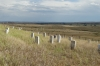 Little Bighorn, Custer's Last Stand