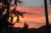 Sunset at Crowsnest Vineyards, Cawston