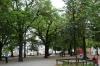 Lindenhoff Hill, Zurich CH